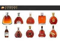 Lịch sử ra đời và phân loại rượu Cognac