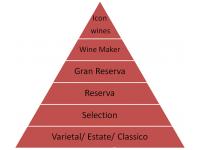 Cách phân biệt đẳng cấp của Rượu vang Chile